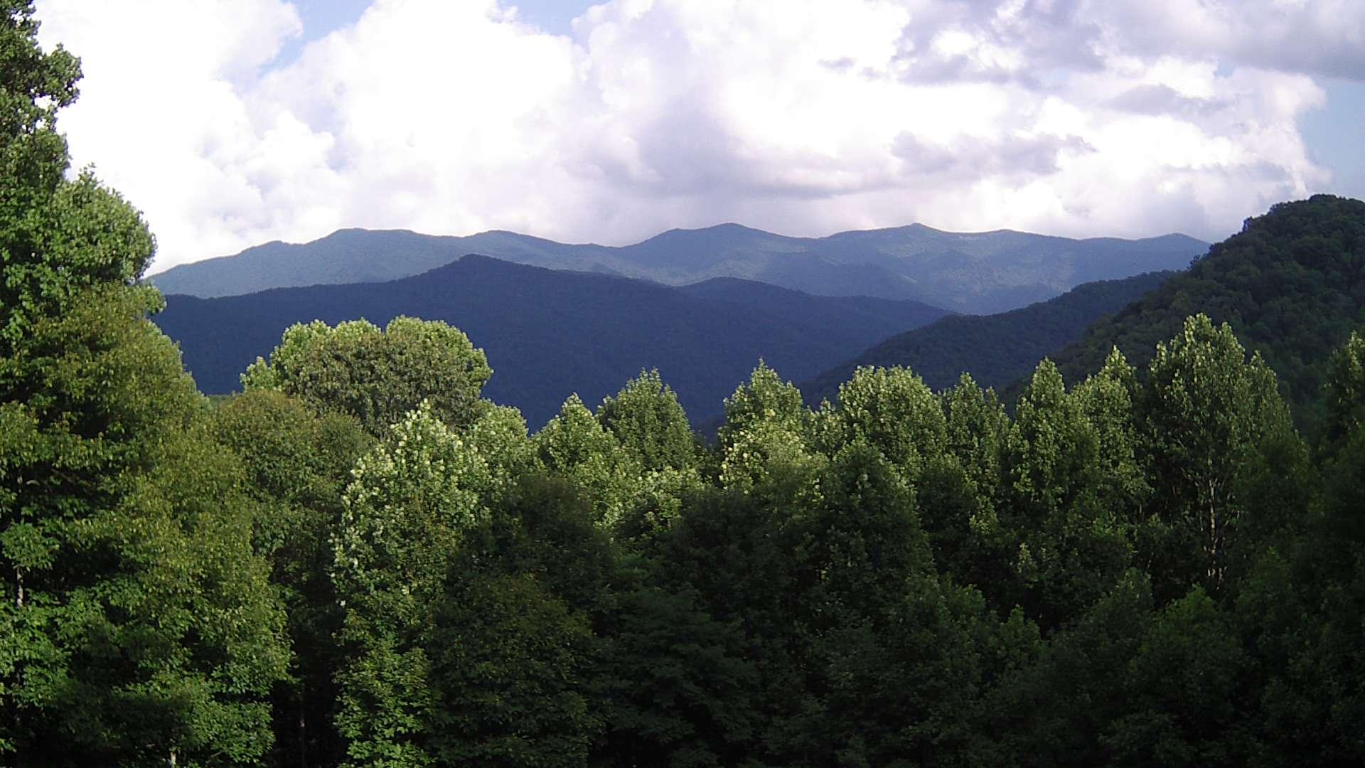 9) Pensacola NC, USA {1920 x 1080px} 3835ft